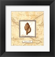 Sea Treasure IV - Mini Framed Print