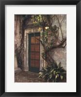 Framed Door No7