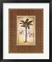 South Palm II Framed Print