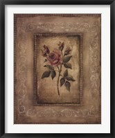Grand Savin Rose Framed Print
