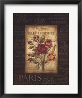 Bel Bouquet III Framed Print