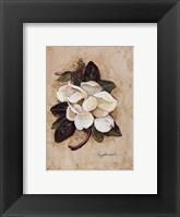 Framed Summertime Magnolia