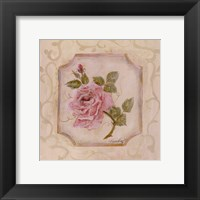 Rose In Season l Framed Print