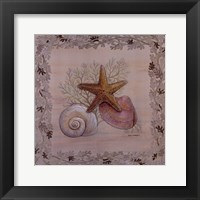 Framed Pastel Shell III