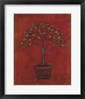 Framed Topiary Fresco Orange