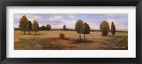 Valley Of Gold II Framed Print