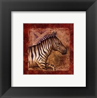 Framed Zebra Safari
