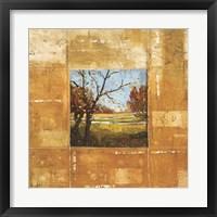 Framed Terranova I