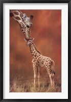 Framed Giraffe Kiss