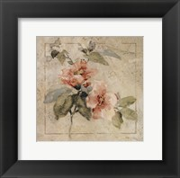 Framed Provence Rose I