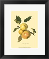 Yellow Elliot Framed Print