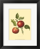 Cowarne Red Framed Print