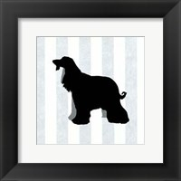 Framed Afghan Hound In Neutral