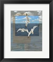 Framed Three White Gulls II