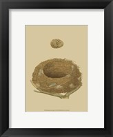 Framed Antique Nest Egg IV