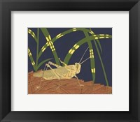 Framed Ornamental Grasshopper I