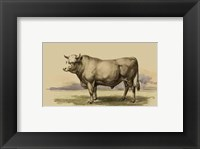 Framed Antique Cow I