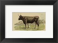 Framed Antique Cow III