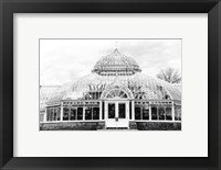Framed Conservatory III