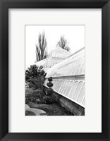 Framed Conservatory IV