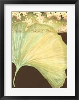 Filigree Ginkgo II Framed Print