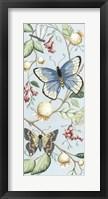 Butterfly Sky I Framed Print