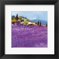 Framed Wild Lavender, Provence