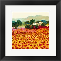 Framed Sunflower Sunset, Tuscany