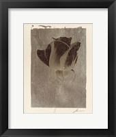 Silver Stem II Framed Print