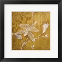Framed Wings Damask IV