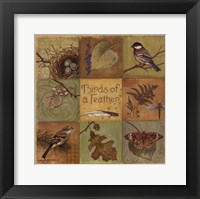 Framed Birds of a Feather - square
