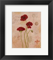 Poppy Fresco II Framed Print