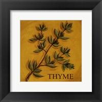Thyme Framed Print