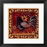 Il Gallo II Framed Print