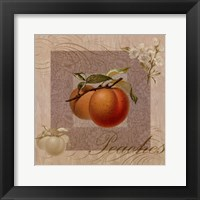 Fruits Blossoms II Framed Print