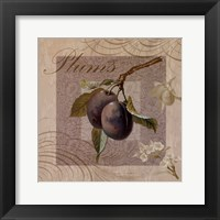 Fruits Blossoms IV Framed Print