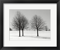 Silhouettes Of Winter I Framed Print