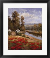 Poppy Vista I Framed Print