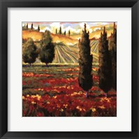 Framed Tuscany In Bloom III