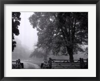 Misty II Framed Print
