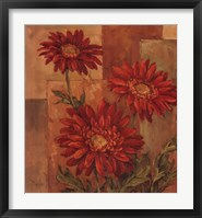 Daisies Terra Cotta Framed Print