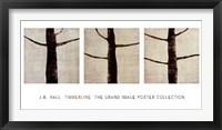 Framed Timberline