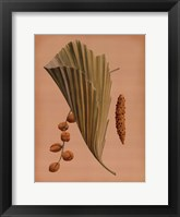 Framed Palm Frond III