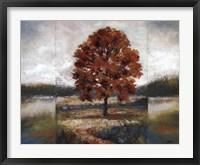 Framed Evening Oak