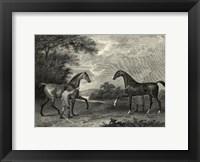 Framed King Herod Flying Childers