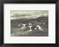 Framed Foxhounds