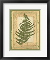 Framed Woodland Scrapbook II