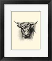 Framed Antique Cattle III