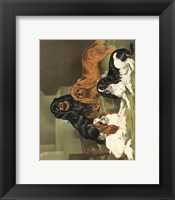 Framed Toy Spaniels
