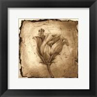 Floral Impression VIII Framed Print
